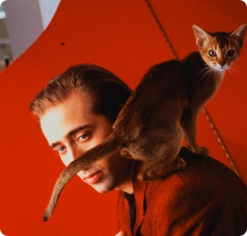 http://cdn.zoopicture.ru/wp-content/uploads/2010/02/600fullnicolascage.jpg