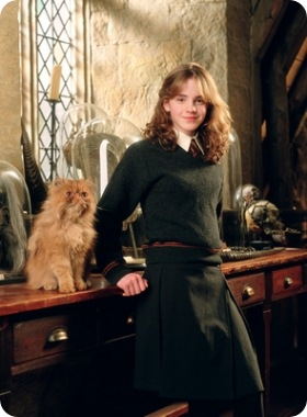 http://cdn.zoopicture.ru/wp-content/uploads/2010/02/Hermione_poa.jpg