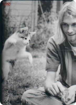 http://cdn.zoopicture.ru/wp-content/uploads/2010/02/kurt_cobain___cat.jpg